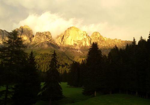 Immagini mucche Scozzesi dal Catinaccio in Alto Adige  Hochlandrinderzucht Südtirol Schottische Hochlandrinder vom Rosengarten | Plank Dieter